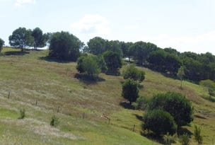 20 Sanctuary Ct, Apple Tree Creek, Qld 4660