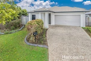 19 Player Street, North Lakes, Qld 4509