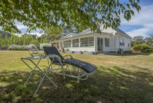 701 Elephant Pass Road, Gray, Tas 7215