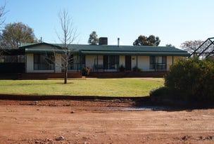 Lot 11 Worthingtons Lane, Condobolin, NSW 2877