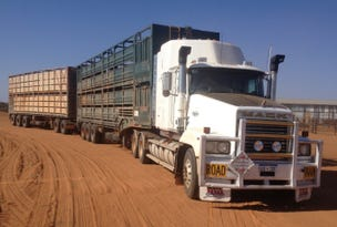 - Bidgemia Station, Gascoyne Junction, WA 6705