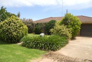 13 Chant Street, Darlington Point, NSW 2706