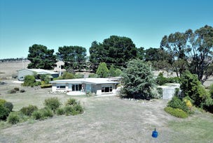 1985 Bridport Road, Bridport, Tas 7262