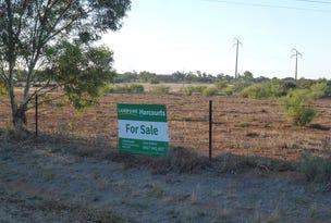 . Bondowie Road, Gladstone, SA 5473