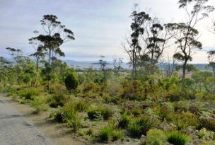 Lot 13 Five Island Estate, Sloping Main, Tas 7186