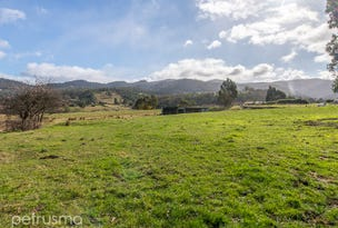 Lot 2 and 3 485 Back River Road, Magra, Tas 7140