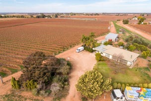 117 & 128a Stewart Road, Red Cliffs, Vic 3496