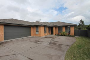 6 Wardle Close, Wallsend, NSW 2287