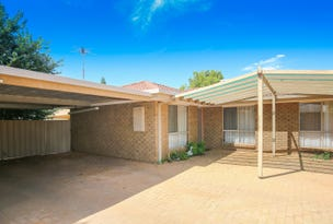 Unit 3/18 Etherington Drive, Mildura, Vic 3500