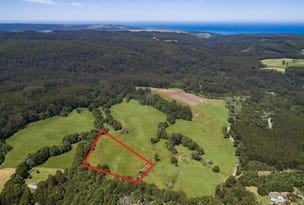 Lot 1 330 Aire Settlement Road, Johanna, Vic 3238
