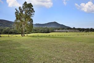 Lot 2 Illaroo Road, Tapitallee, NSW 2540