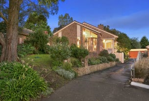 23 Australis Close, Langwarrin, Vic 3910