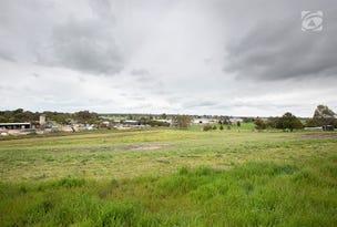 Lot 2 Carthys Road, Naracoorte, SA 5271