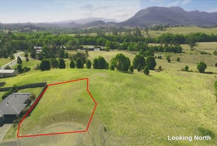 Lot 31 Belleville Court, Nimbin, NSW 2480
