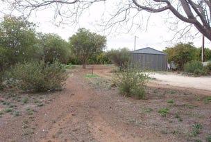Lot 114 Swan Reach Road, Nildottie, SA 5238