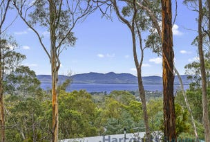 3 Deborah Lane, Dodges Ferry, Tas 7173