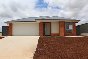 79 Scoular Road, Blakeview, SA 5114