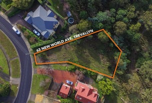 63 New World Avenue, Trevallyn, Tas 7250
