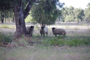 190 Werah Creek Road, Wee Waa, NSW 2388