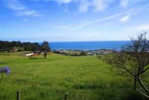 79 Zig Zag Road, Sulphur Creek, Tas 7316
