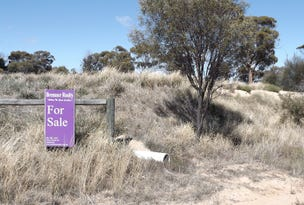 Lot 11, Cartmeticup, Woodanilling, WA 6316