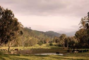 Timor Creek Stud, Murrurundi, NSW 2338