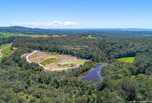 666 Louis Bazzo Drive, Ringtail Creek, Qld 4565