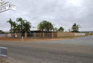 104 Beattie Road, Waggrakine, WA 6530