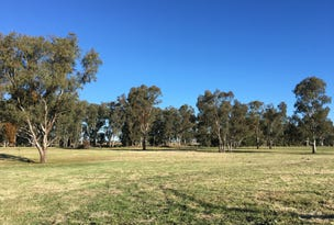 Lot 119, 207 Riverside Drive, Narrabri, NSW 2390