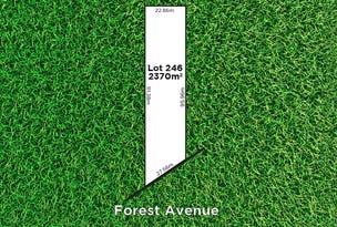 20 Forest Avenue, Hawthorndene, SA 5051
