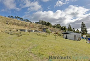 545 Rhyndaston Road, Rhyndaston, Tas 7120