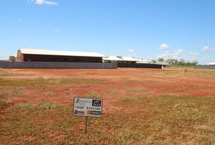Lot 3412 (Block 25) Casuarina Park, Katherine, NT 0850