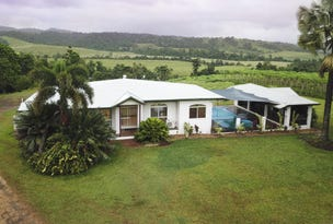 147 DALY Road, Camp Creek, Qld 4871