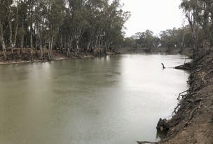 Riverside Homestead Colenso Park Road, Barham, NSW 2732