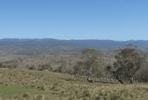 7597 Snowy River Way, Jindabyne, NSW 2627