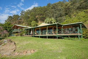 1133 Tuntable Creek Road, Nimbin, NSW 2480