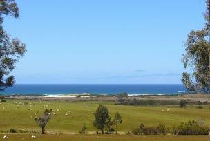 19595 Tasman Highway, Seymour, Tas 7215