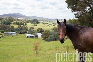 176 Johnstons Road, Hillwood, Tas 7252