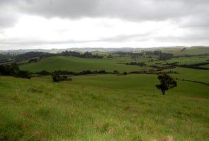 501 Maynards Plains Rd, Dorrigo, NSW 2453