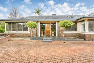 3 Barns Avenue, Highbury, SA 5089
