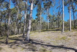 Lot 89 Valleyview Drive, Mount Nathan, Qld 4211