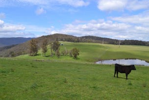 250 New Guinea Road, W Tree, Vic 3885