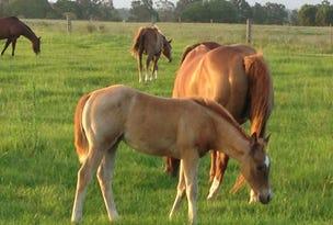 126 Marys Bay Road, Euroka, NSW 2440