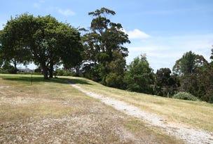 101 Moore Court, Wynyard, Tas 7325
