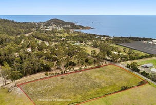 50 Harveys Farm Road, Bicheno, Tas 7215