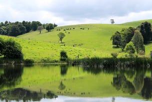 5287 Waterfall Way, Dorrigo, NSW 2453