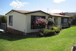 248 Back River Road, New Norfolk, Tas 7140