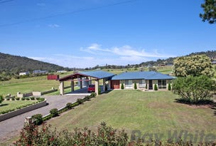 345 Martins Creek Road, Paterson, NSW 2421