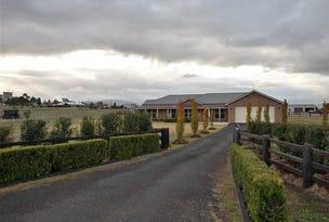 38 Allan Cunningham Road, Scone, NSW 2337