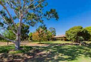 25 Cummins Drive, San Isidore, NSW 2650